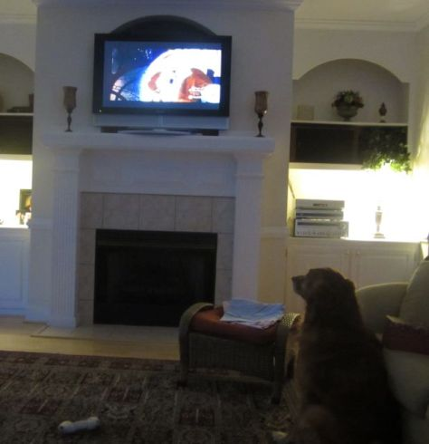 Hurley watching a Christmas Show