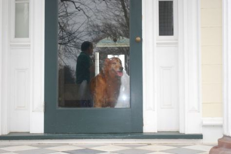 Hurley, the door greeter