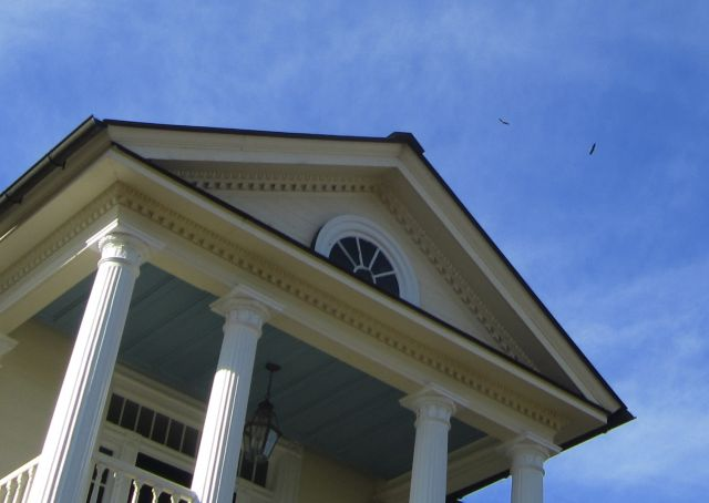 Eagles flying over the Mansion at Belle Grove