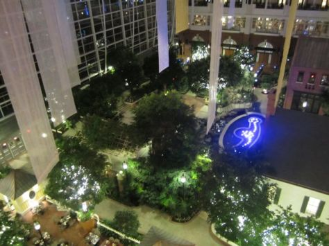 Gaylord NationalView from my balcony of the atrium.