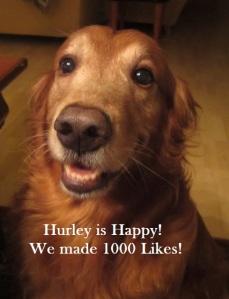 Hurley is Happy