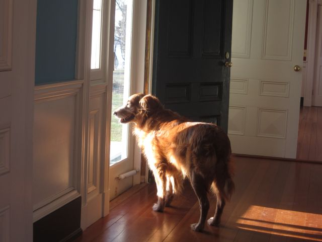 Hurley looking out of the Riverside door