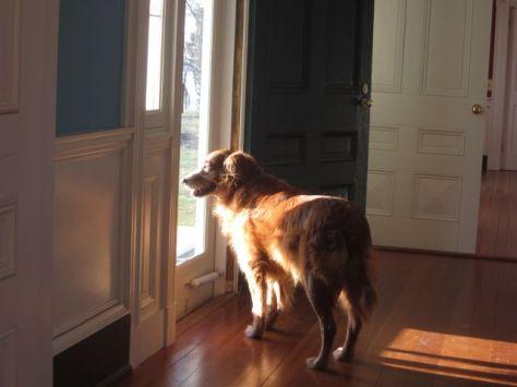 Hurley looking out of the Riverside door