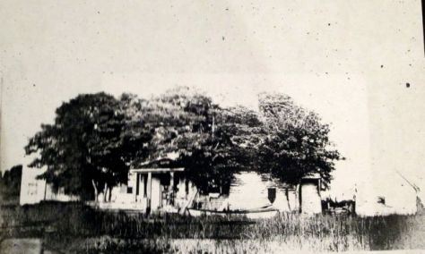 Building on the bank of the river on the Walsingham Plantation1906