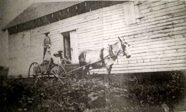 Granary on the Back Field of the Walsingham Plantation1906
