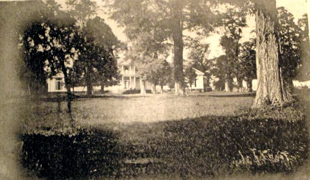 Belle Grove from the Carriage side in the Bowling Green. Some of these trees are still standing there today.1906