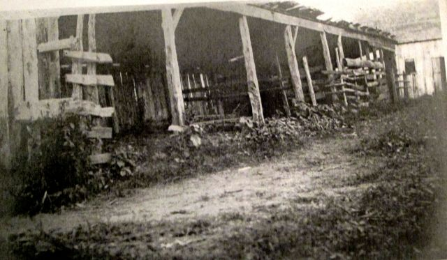 Old sheds on the Walsingham Plantation1906