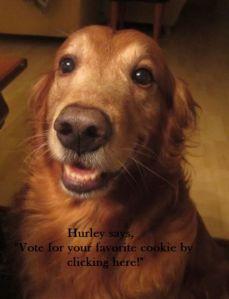 Hurley Vote