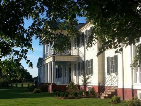 Back Belle Grove