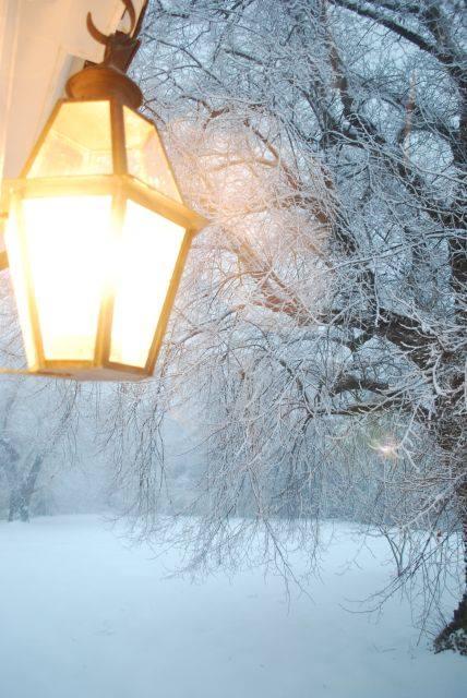Lantern Snow